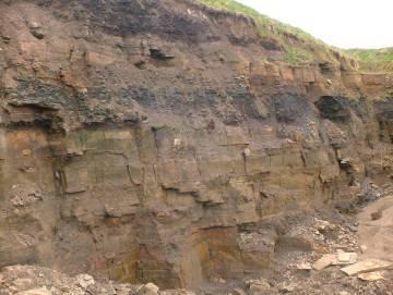 sedimentary yorkstone